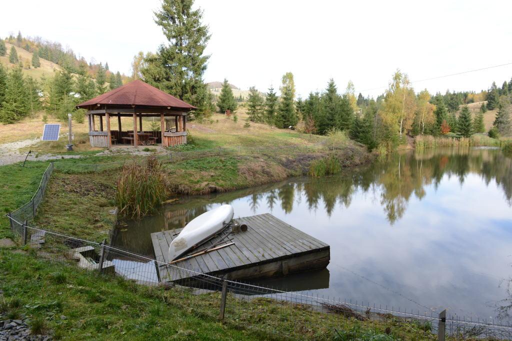 Der Verein Tasuleasa Social zeigt, wie ökologisches Leben ausssehen kann. Auf dem Vereinsgelände ist eine natürliche Kläranalge.